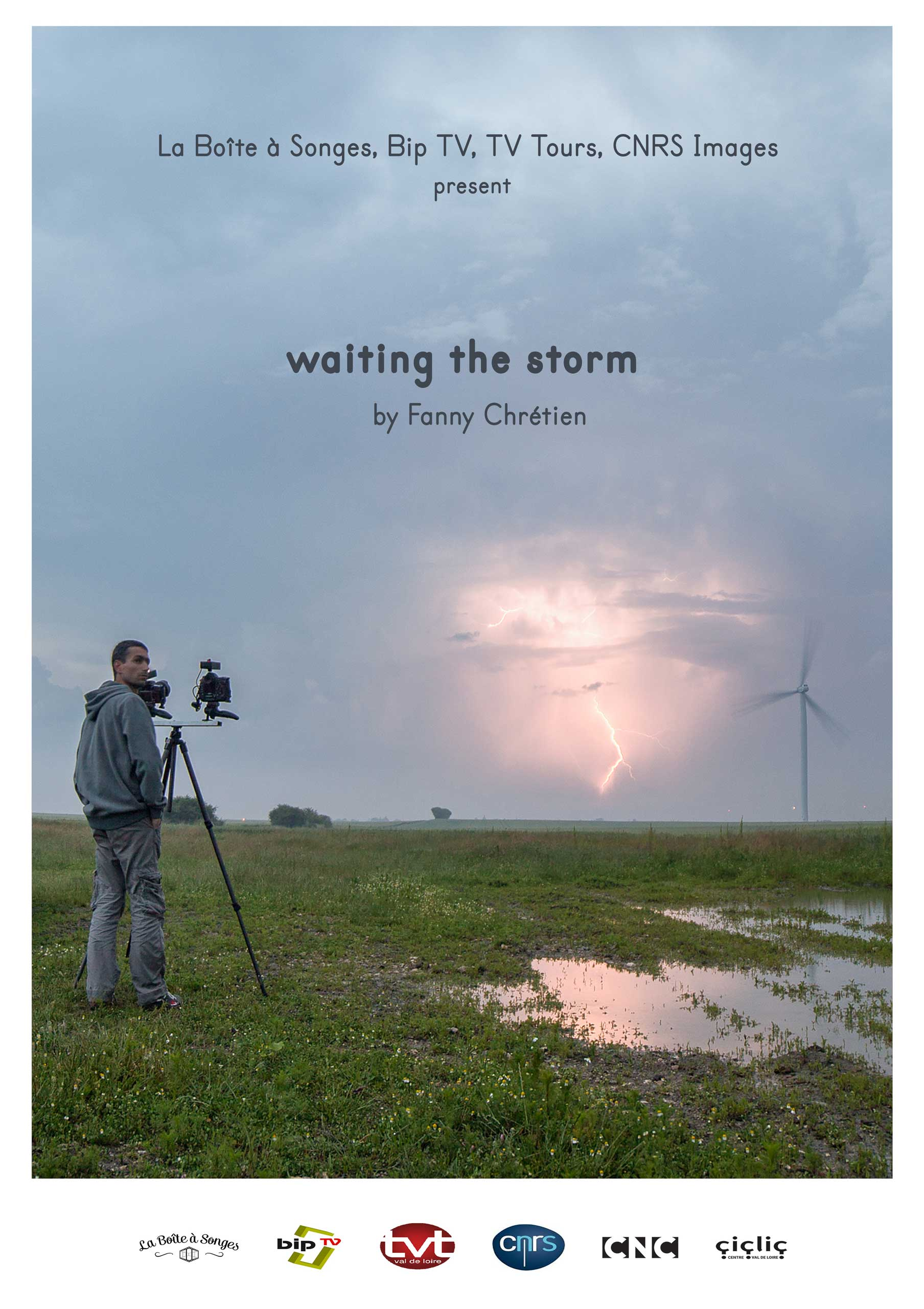 poster of the movie waiting the storm